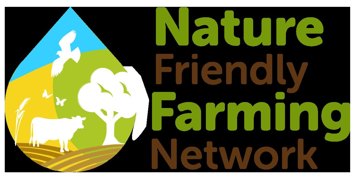 NFFN Logo Master