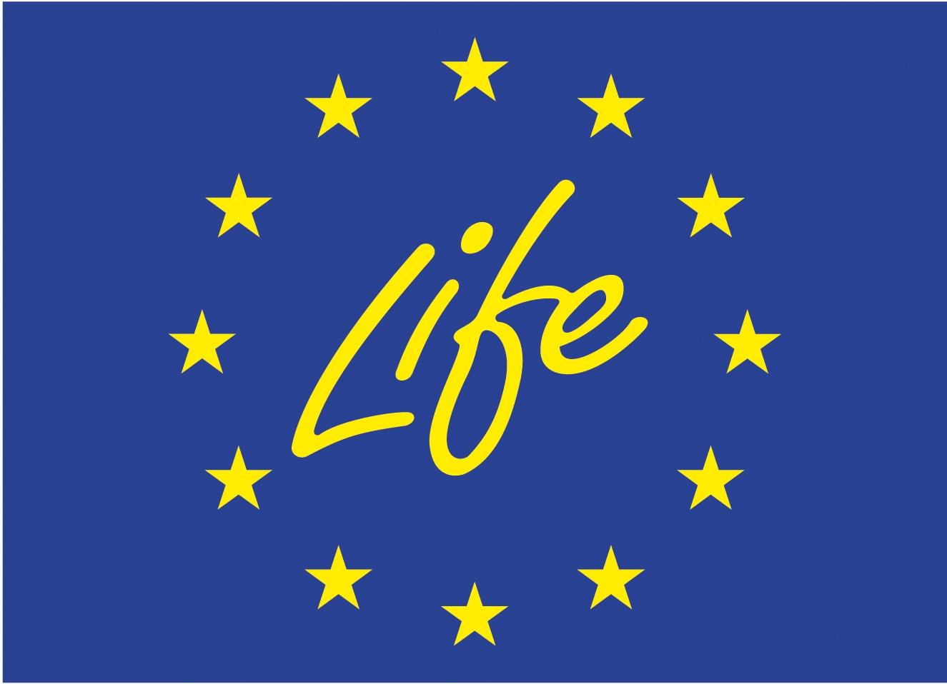 life logo